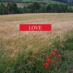 De l'amour dans l'air…