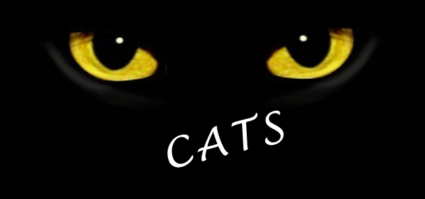 CATS_LRG-620x291
