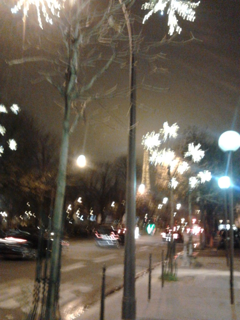 devant theatre champs elysées 1 décembre 2014